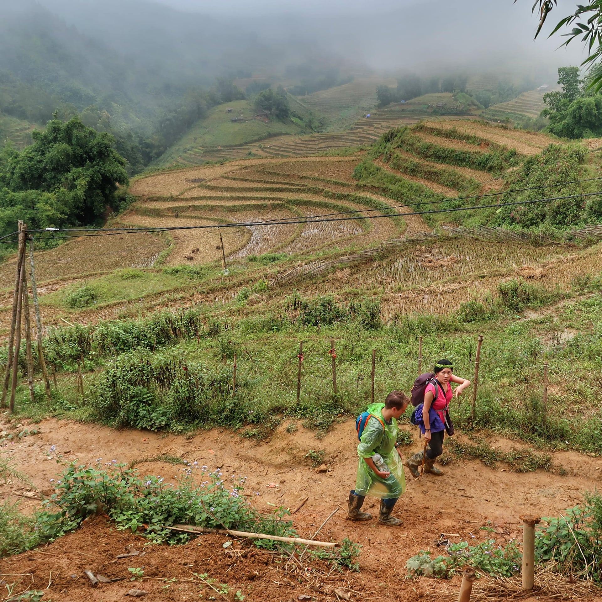 Udsigt over rismarkerne i Sapa