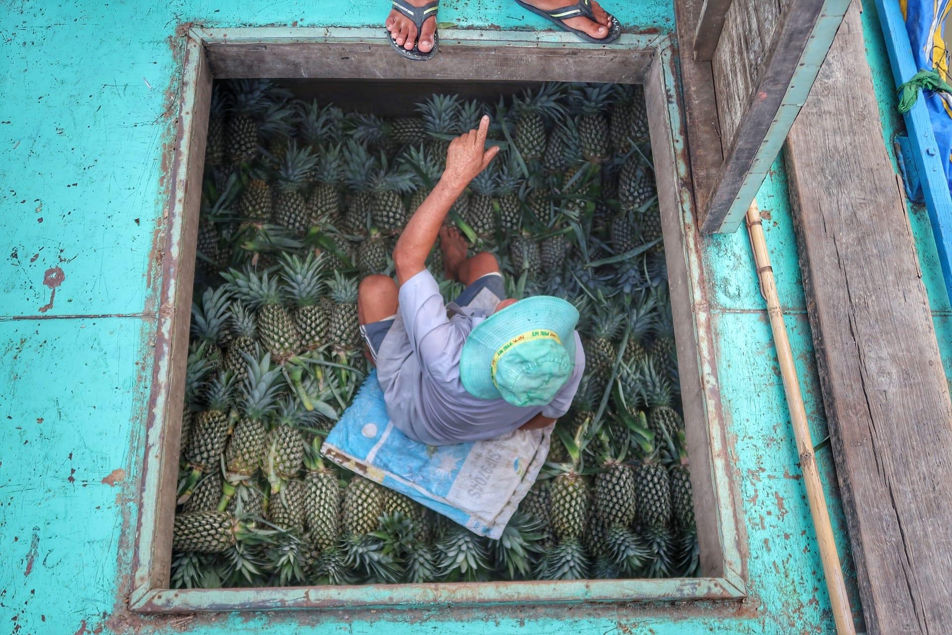 Mekong River, mand sælger ananas