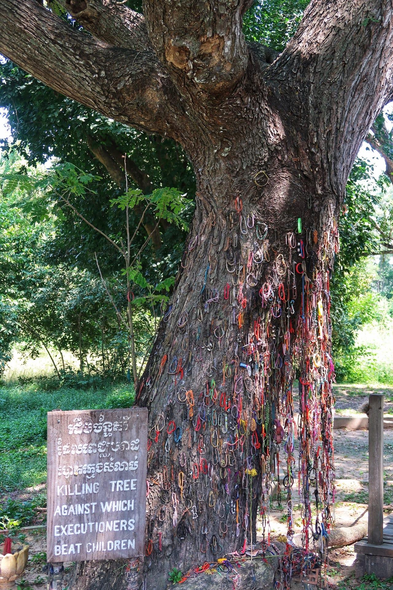 Børnetræ fra Killing fields